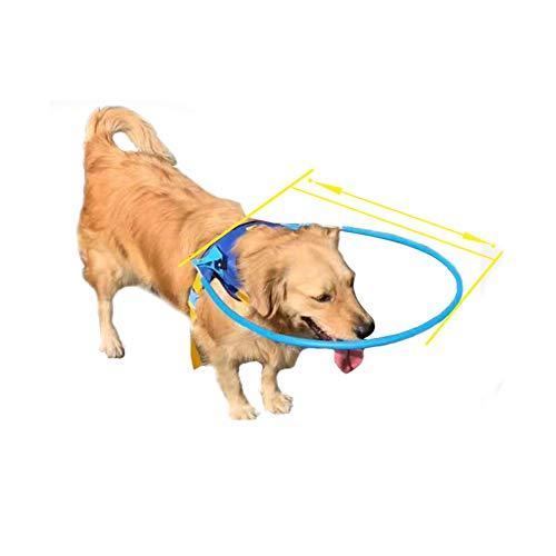 Arnés de halo, seguro para mascotas, para perros ciegos, anillo protector de plástico para perros con ojos enfermos, evita colisiones, anillo de chaleco protector suave