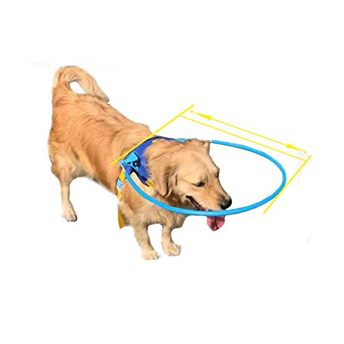 Arnés de halo seguro para mascotas para perros ciegos anillo protector de plástico para perros con ojos enfermos prevenir colisiones suave chaleco protector anillo