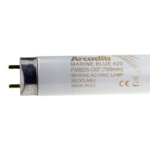 Arcadia 36 Watt Marine Blue 420nm Lampe Aquarium Meerwasser Leuchtstofflampe