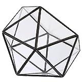 B Blesiya Caja De Terrario Geométrico De Vidrio Transparente Maceta Suculenta Maceta Decoración De Fiesta En Casa - Negro, 15 x 15 x 15 cm