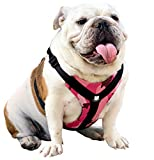 Bulldog Grade Harness for English-American-French Bulldogs - Custom Fit, No Pull, Reflective Vest Harnesses for Your Bully (Small, Pink Camo)