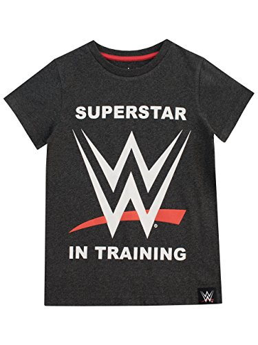 WWE Camiseta para niño World Wrestling Entertainment Gris 9-10 Años