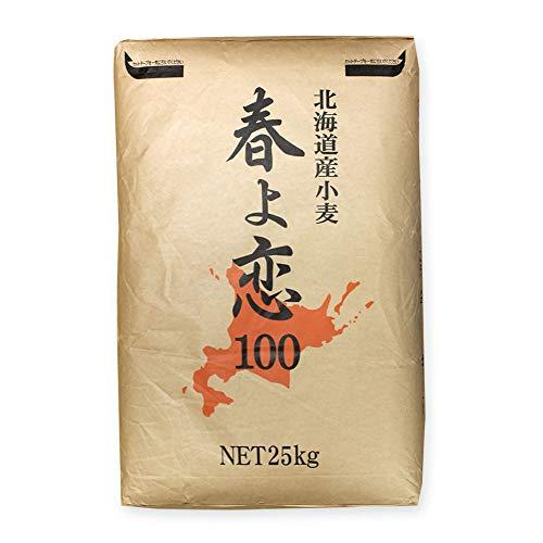 強力粉 mamapan 春よ恋100 業務用 25kg 国産小麦粉