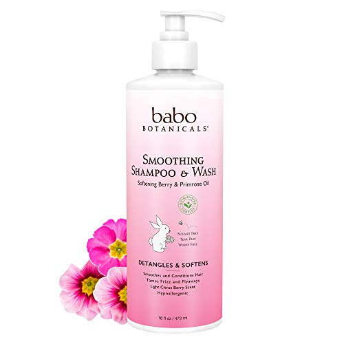 Babo Botanicals Smoothing 2-in-1 Shampoo & Wash with Natural Berry and Evening Primrose oil, Hypoallergenic, Vegan, For Babies and Kids - 16 oz, 16 Fl. Oz (Pack of 1) (899248002019)