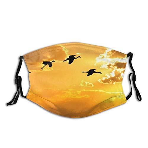YUDILINSA Gesichtsbedeckung,Sonnenlicht Vögel Sonnenuntergang Himmel Flügel Silhouette Sonnenaufgang Morgen Alaska Gold Karibik Kraniche Composite Ikarus Flug,Staubschutz Mund Bandanas Mit 2 Filtern