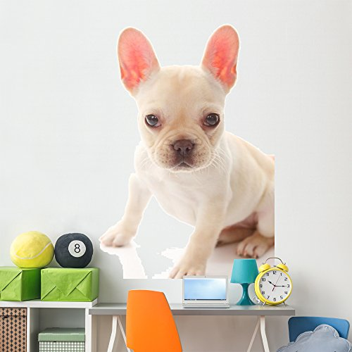 Wallmonkeys French Bulldog Wall Decal Peel and Stick Graphic (72 in H x 48 in W) WM244955
