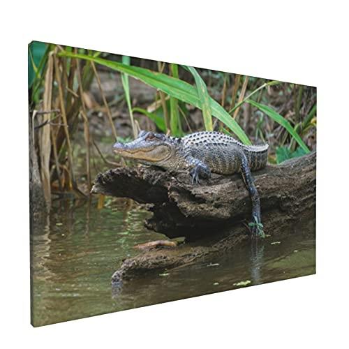 PATINISA Dekorative Malerei,Louisiana Honey Island Sumpf Amerikanischer Alligator Bayou,Wand Poster Drucke Wandkunst Leinwand Wandbild Für Wohnzimmer 12x18inch