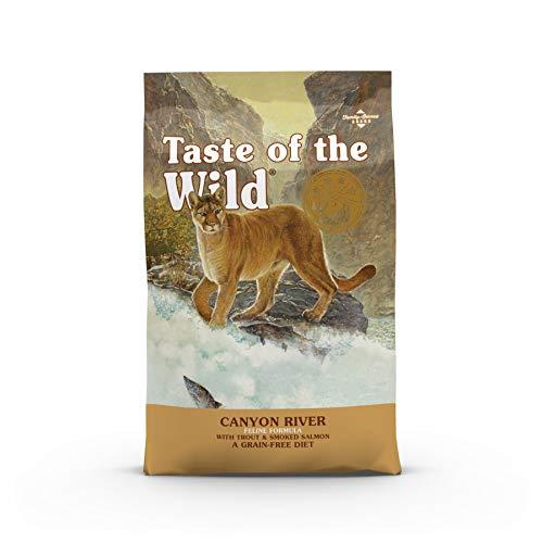 Taste Of The Wild pienso para gatos con Trucha y Salmon ahumado 2 kg Canyon River 🔥