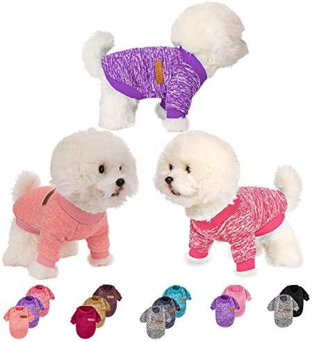 3-pieces-dog-clothes-for-small-medium