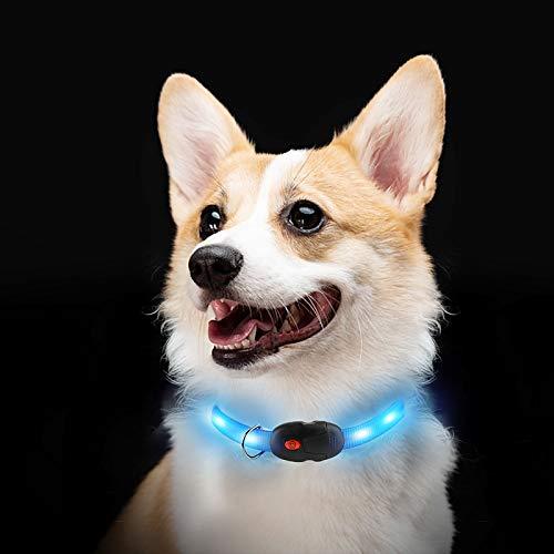 NAMSAN LED Hundehalsband Wasserdicht Hundeleuchthalsband Wiederaufladbar Halsband für Hunde/ Katzen, 3 Leuchtmodi 10 Leuchtet (Blau)