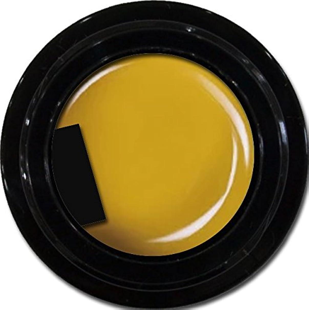 ロータリー逆説ブラウザカラージェル enchant color gel M605 Cameron3g/ マットカラージェル M605キャメロン 3グラム