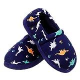 MIXIN Little Kids Boys Cute Cartoon Dinosaur Slippers Blue Size 11 12 M