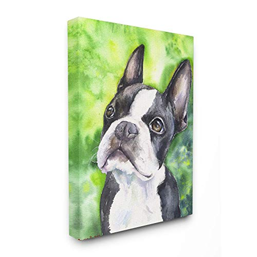 Stupell Industries Cute Boston Terrier Dog Pet Animal Watercolor Painting Canvas Wall Art, 16 x 20, Multi-Color