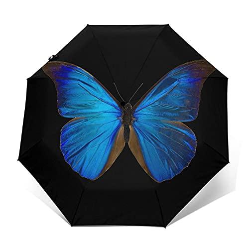 Pengfly Paraguas de insectos de mariposa azul plegable azul mariposa paraguas animal sombrilla durable portátil para la lluvia al aire libre