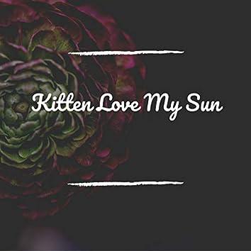 Kitten Love My Sun