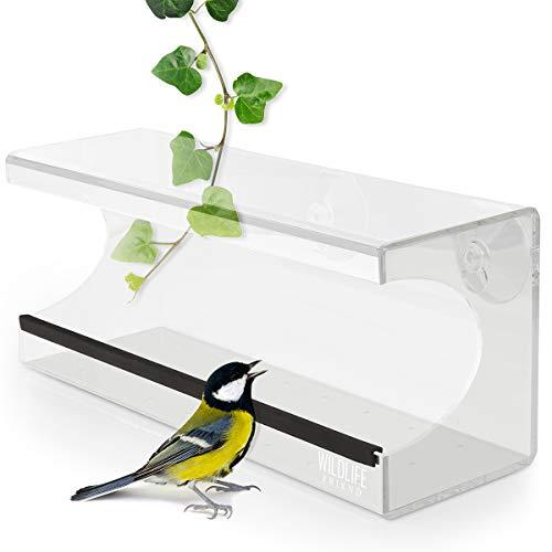 WILDLIFE FRIEND | Fenster Futterhaus für Vögel mit 30cm Länge - aus transparentem Acryl mit Saugnäpfen, Futterspender, Vogelfutterhaus für Meisen, Spatzen & kleineren Wildvögel [Extended]