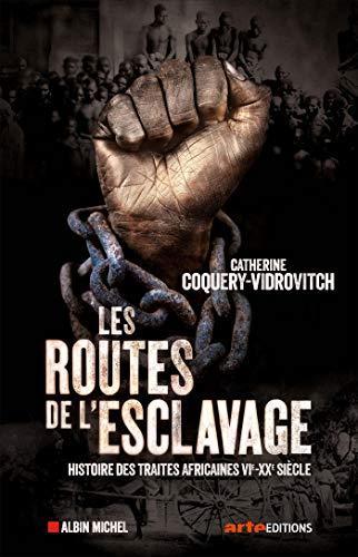 Les Routes de l'esclavage: Histoire des traites africaines VIe-XXe siècle