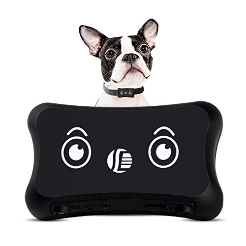 Pet GPS Tracker, Dog Activity Monitor Android/iPhone Waterproof Adjustable Collar Dogs Cats (2 Dogs)