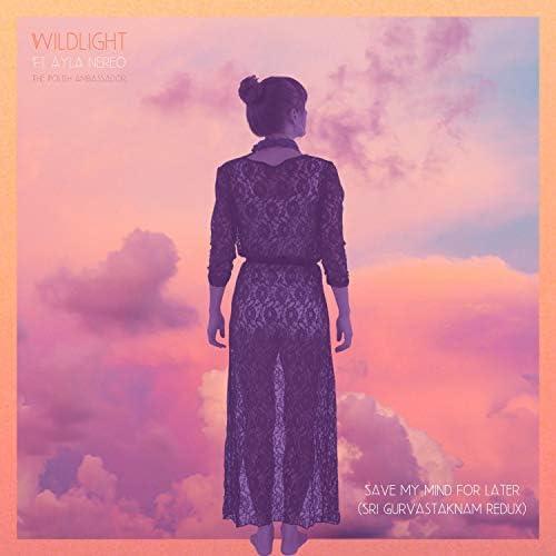 Wildlight, Ayla Nereo & The Polish Ambassador