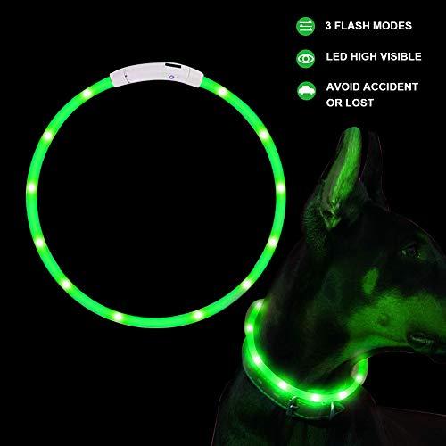 SaponinTree LED Leuchthalsband Hunde Halsband USB wiederaufladbar - Längenverstellbarer Haustier Sicherheit Kragen für Hunde und Katzen (Grün)