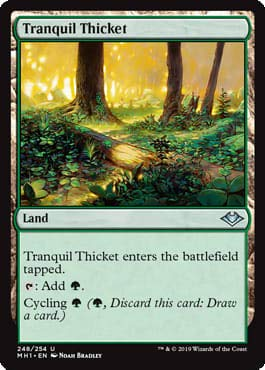 Magic: the Gathering - Tranquil Thicket - Boschetto Tranquillo - Modern Horizons