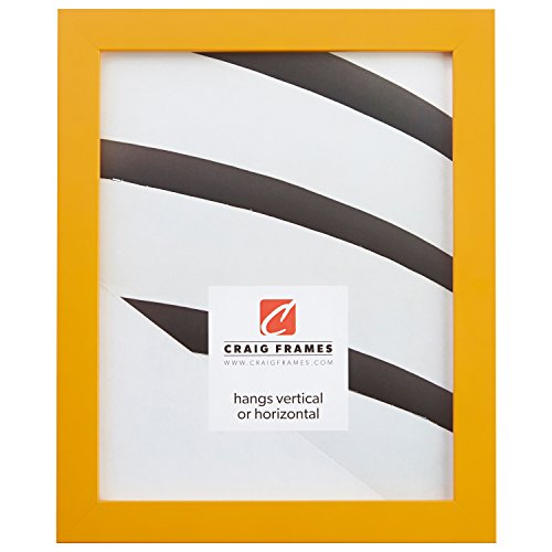 Craig Frames Confetti, Modern Yellow Picture Frame, 18 x 24 Inch