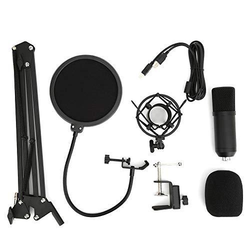 USB-Mikrofon-Set, 92 kHz/24 Bit ...