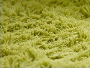 KOOCO Mode Super weichen Teppich/Teppichboden/Teppich/Rutschsichere Mat/Fußmatte Teppich und Wolldecke für Wohnzimmer und Schlafzimmer 200 * 300 cm, Grasgrün, 2000 mm X 3000 mm