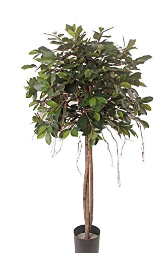 artplants.de Ficus Benjamina sintético Micah, Tallos Naturales, Verde, 145cm - Ficus Artificial - Árbol Textil