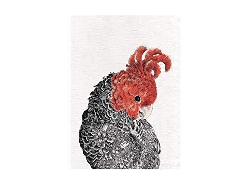 Maxwell & Williams Marini Ferlazzo Birds - Strofinaccio stampato, 100% cotone, colore: nero/bianco, 50 x 70 cm