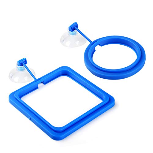WEAVERBIRD 2 Pcs Fish Feeding Rings, Fish Safe Floating Food Feeder Circle Blue, Easy to Install, Square and Round Shape with Suction Cup for Aquarium Fish Tank