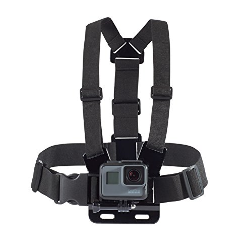 Harness Amazon