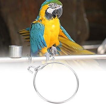 Anneau de pied de perroquet, anneau de pied en métal durable d'oiseaux de compagnie, accessoires de fournitures de cage de formation d'ouverture d'activité, (petite taille) (5 pièces par vente)