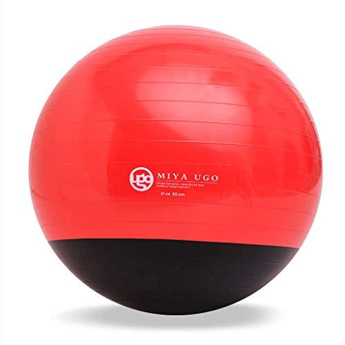 TONG Pelota de Yoga, Color Doble, Pelota de Gimnasia a Prueba de explosiones, Equipo de Yoga, acondicionamiento físico, Perder Peso Forma (Color : C)