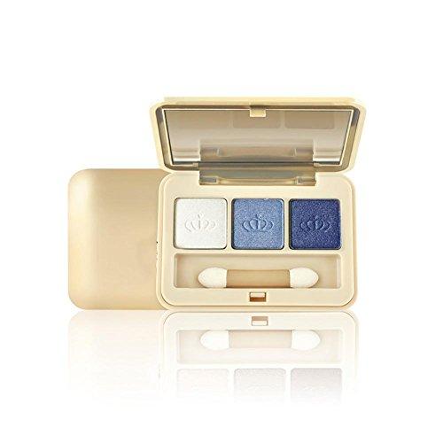 Paquet de maquillage de la palette d'ombre à paupières colorées de la Terre et de la Terre Smoky Makeup 3 , 001