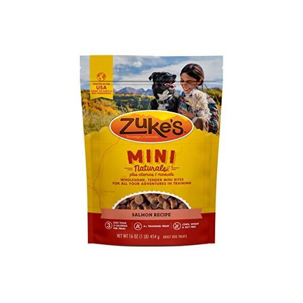 Zuke's Mini Naturals Training Dog Treats Salmon Recipe – 16 Oz Bag
