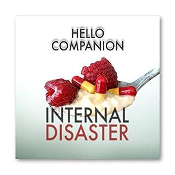 Internal Disaster