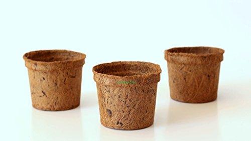 Pokugiardini, biologisch abbaubare Kokostöpfe; ø 13 cm; 10 Stck