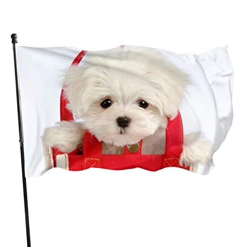 AOOEDM flag Home Flag 3x5 Ft Dog in The Bag Double Decoration Banner Outdoors Party Flags