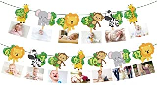 Jungle 1st Birthday Photo Banner Newborn to 12 Month Display Milestone Safari Animals Theme First Year Baby Banner Jungle Party Photo Booth Props Cake Smash Party Decorations Supplies