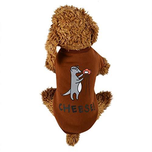 Allegorly Haustier Pullover Hund Katze Welpen Kleidungs Hundehemd Nettes Mode Haustier Atmungsaktiv Briefdruck T-Shirt Kleine und mittelgroße Hunde für Chihuahua Welpe Teddy Pudel