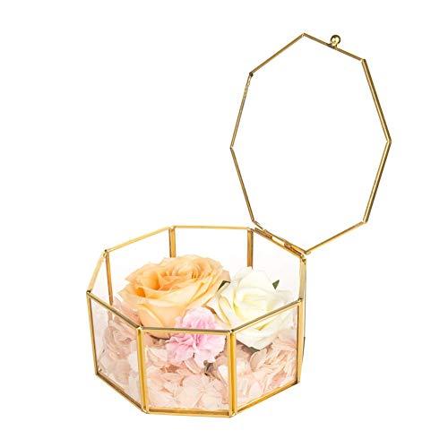 Doublez Glas Terrarium Box,2.95 * 2.95 * 1.77inch Geometrisches Schmuckschatulle aus Glas Box für Ringe Ohrringe Aufbewahrung Blume