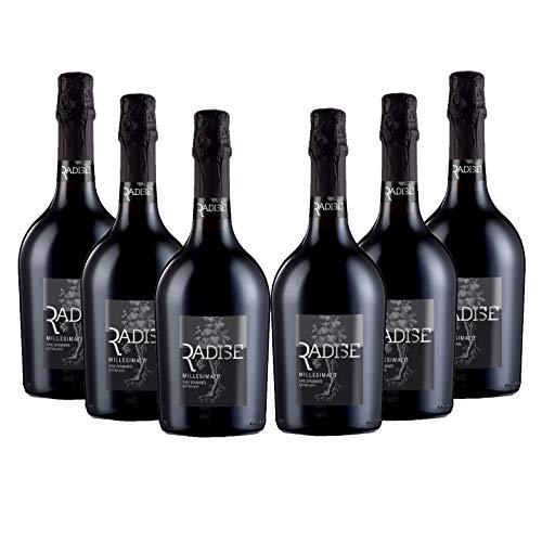 RADISE Spumante Extra Dry Box 6 bottiglie x 750 ml, Vino Millesimato, 100% Uve Glera, Gusto Fruttato, Vendemmia 2019, Veneto
