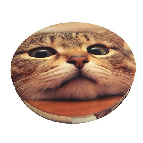 Gepolstert Funny Cat Round Barhocker Cover Kissen mit elastischem Stoff Round Chair Sitzkissen für Holz Metallhocker