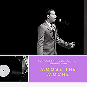 Moose The Moche