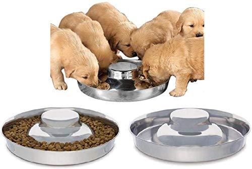 Cuenco de acero inoxidable para perros de King International