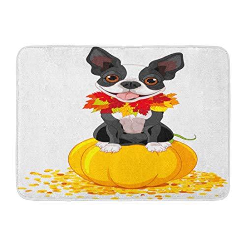 Fußmatten Bad Teppiche Outdoor/Indoor Fußmatte Hund Boston Terrier sitzt auf Kürbis Halloween Cartoon Kostüm Tiere Badezimmer Dekor Teppich Badematte