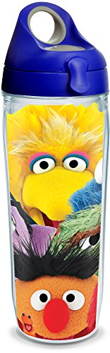 Tervis Made in USA Double Walled Sesame Street Insulated Tumbler Cup Keeps Drinks Cold & Hot, 24oz Water Bottle, Big Faces