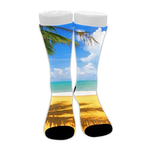 shenguang Summer Sunlight Beach Palm Tree With Sky Art Unisex Novedad Calcetines de vestir de algodón Calcetines de compresión atléticos de media pantorrilla