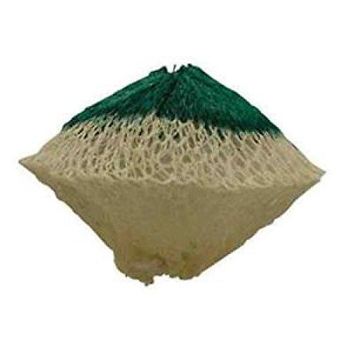 Coleman Company Slip-On Rosette Shape #51 Lantern Mantles (Pack of 2), Green/White